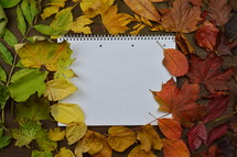 fall leaves border and notebook - colorful autumn leaves in color gradient on brown wood with a blank spiral bound notebook in the middle
