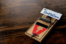 word temptation on a mousetrap