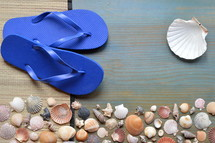 variety of seashells with sandals on cyan wooden plank