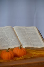 open Bible and mini pumpkins on altar