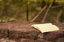 open Bible on the top of a stone wall