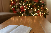 open Bible on a coffee table and Christmas tree in the background
