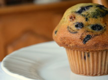 Blueberry muffin on a white plate.