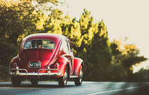 Red VW bug driving up a tree-lined road.