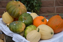 green, orange, and white pumpkins in a wagon