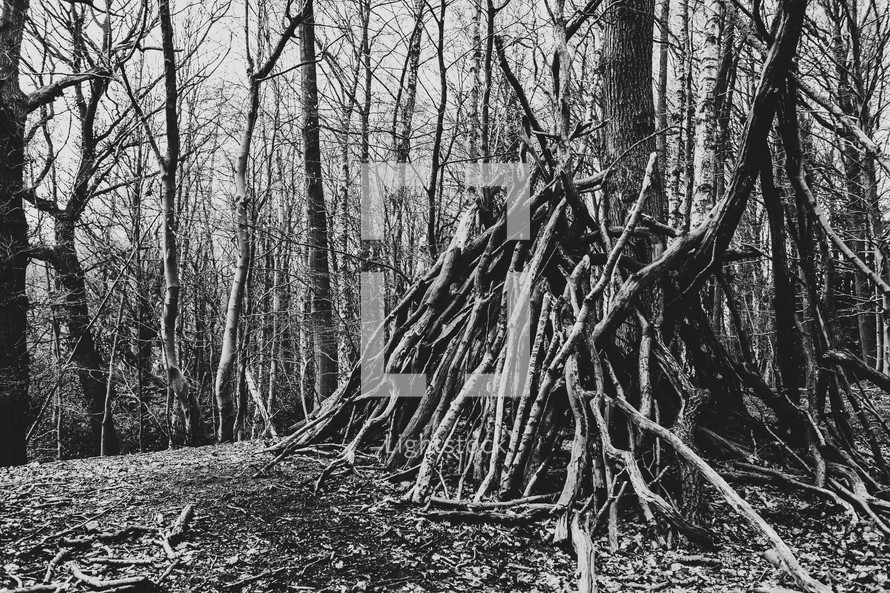 sticks made into a fort in a forest