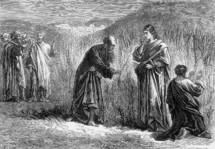 The Disciples picking corn