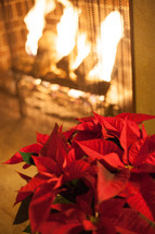 poinsettia by a fireplace