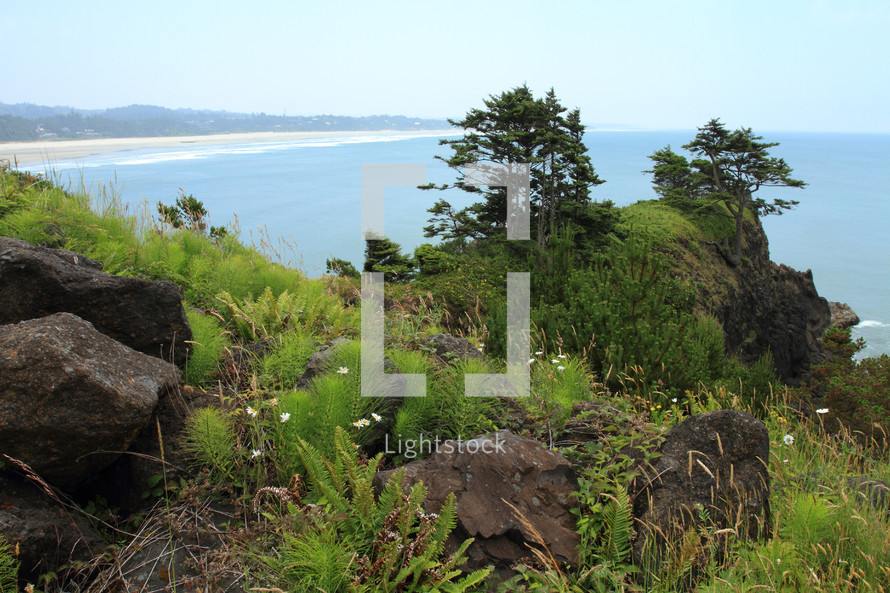 Hillside of rocks and trees overlooking ocean, mountains and blue sky.