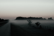 Fog om a field at daybreak.