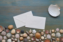 greetings from the summer vacation: variety of seashells on cyan wooden plank with a blank letter