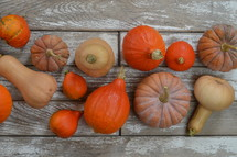 gourds and pumpkins on gray wood background