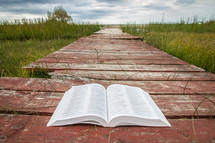 Open Bible on wooden path leading to the coastline