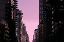 city buildings against a purple sky