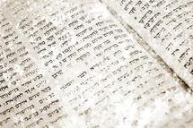 Hebrew Bible scroll