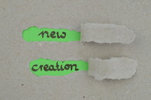 ripped open paper with the words NEW CREATION