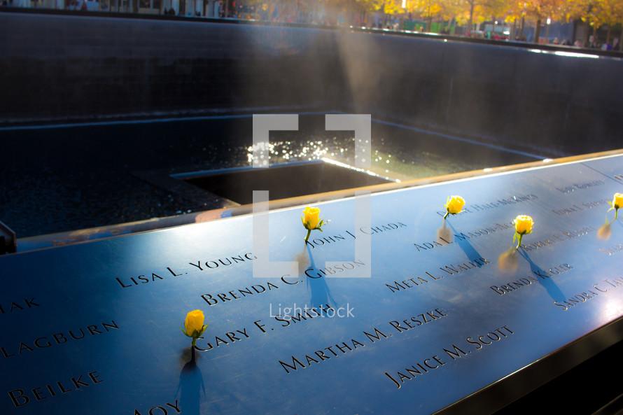 yellow roses at the 9/11 memorial