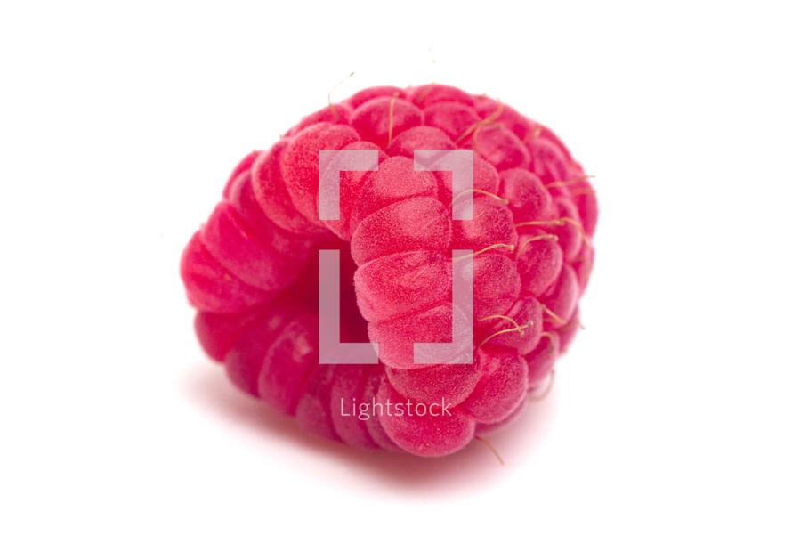raspberry on white