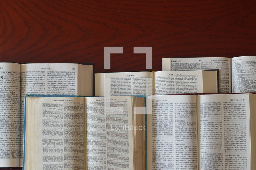 bibles in different languages.