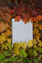 fall leaf border and notebook -  colorful autumn leaves in color gradient on brown wood with a blank spiral bound notebook in the middle