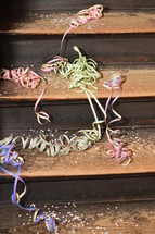confetti and ribbons on wood steps