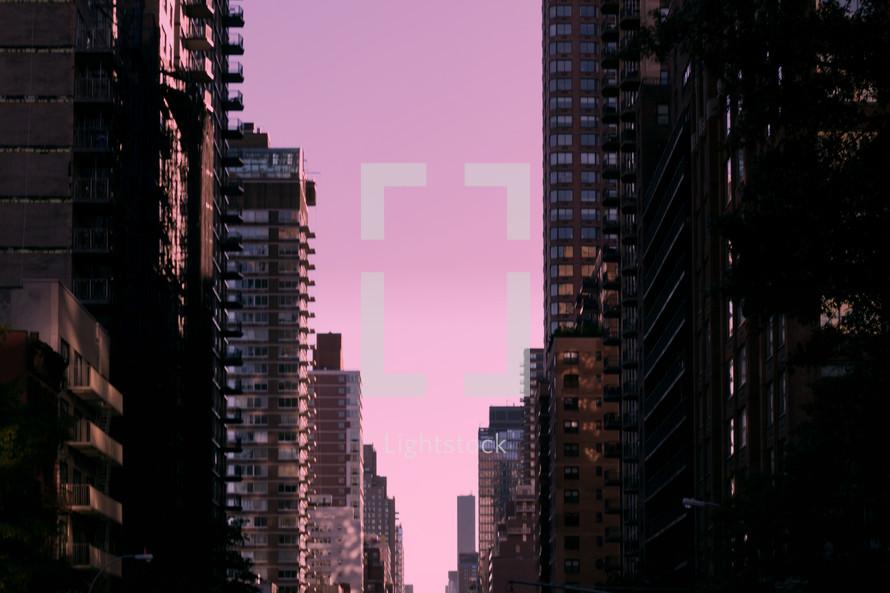 city buildings against a purple sky