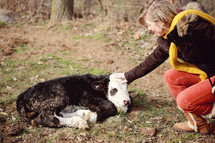girl petting a baby cow