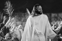 Jesus entering the temple and Palm fronds