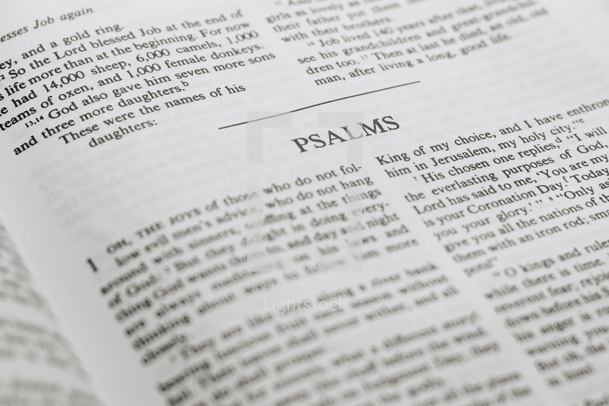 The Holy scripture of the Psalms