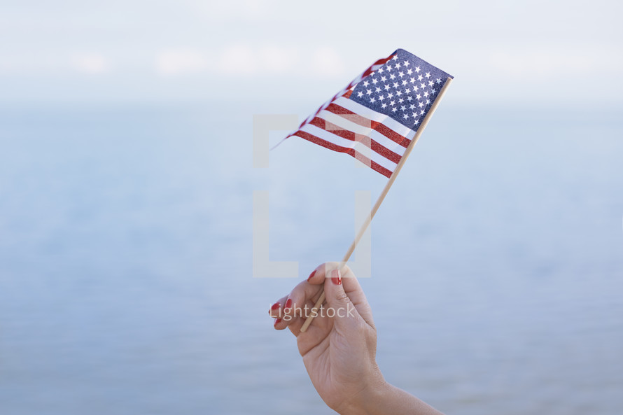 hand holding a small American flag