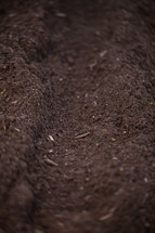 soil in the garden