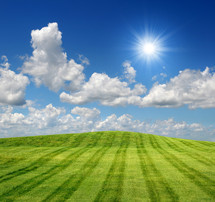 Sunny day on a freshly mowed grass lawn.