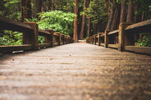 Wood boardwalk in a forest | Bridge | Journey | Destination | Outside | Outdoors