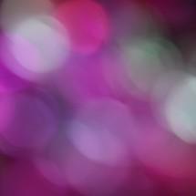pink, fuchsia, and white bokeh lights background