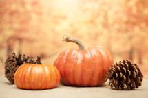 Thanksgiving Autumn Background