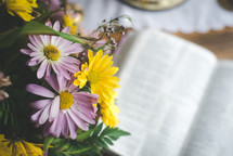 spring flowers and an open Bible