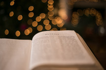 bokeh light from a Christmas tree and an open Bible