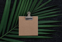 blank notepad on a clip and palm frond