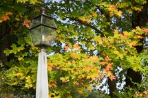 Lamp post in the fall foliage.