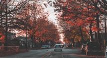 neighborhood street in fall