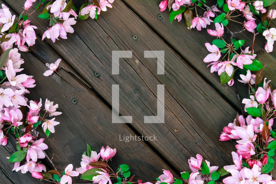 border of azalea flowers on a wood deck