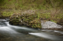 Water running through tree-lined creek with mossy rocks.