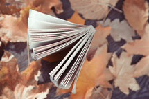 book on fall leaves