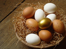one golden egg in a basket of white and brown speckled eggs, sitting on a wooden surface