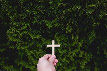 hand holding a cross in front of a bush