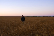 cowboy in a wheat field
