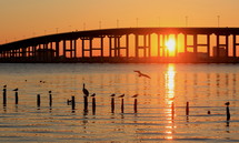 Sunset beyond a bridge over and ocean bay with birds.
