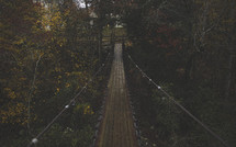 a swinging bridge over a creek