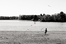 a boy child chasing birds on a lake shore