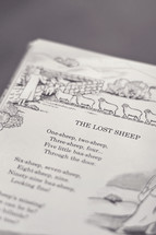 An illustrated children's book about the lost sheep.